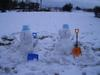 20081_snow